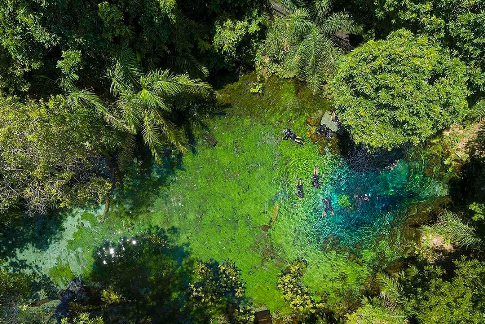 O guia completo sobre ecoturismo em Bonito – MS – Blog Nascente Azul